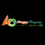 logonew_5_-removebg-preview